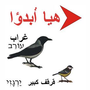 משחק ציפורים בערבית, קבוצתי, משחקים לימודיים